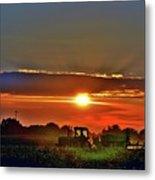 Farmer And A Sunset. Metal Print