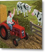 Farmer Visiting Cows In Field Metal Print by Martin Davey