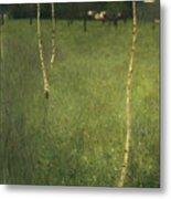 Farmhouse With Birch Trees Metal Print by Gustav Klimt
