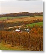 Farming In The Valley Metal Print