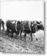 Farming: Ploughing, C1930 Metal Print