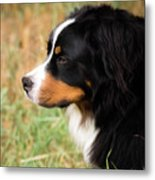 Farwell To Cousin And Friend Metal Print