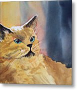 Fat Cat Metal Print