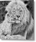 Father And Son Metal Print