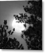 Favorite Full Moon Metal Print