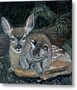 Fawn And Cat Metal Print