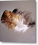 Feather And Shadow 2 Metal Print