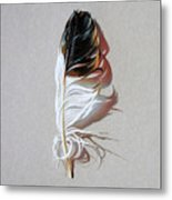 Feather And Shadow 3 Metal Print
