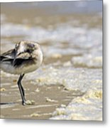 Feather Bed Metal Print