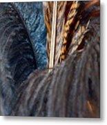 Feather Fun Metal Print