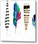 Feather Study Metal Print
