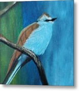 Feathered Friends Second In Series Metal Print