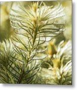 Featherheads Metal Print