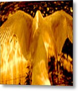 Feathers Of Light - Gold Metal Print