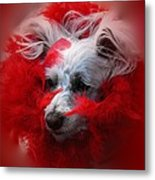 Feathers Of Red Metal Print