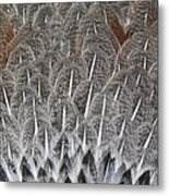 Feathers Of The Wild Hen Metal Print