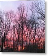 February At Twilight Metal Print