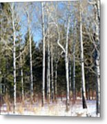 February Bliss Metal Print