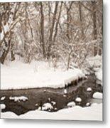February Snow Metal Print