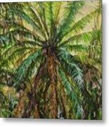 Federico Palm Metal Print