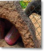 Feeding The Anteater Metal Print