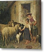 Feeding The Sheep Metal Print