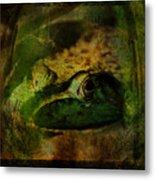 Feeling Froggy Metal Print