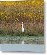 Feeling Small In A Big World Metal Print