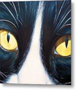 Feline Face 2 Metal Print