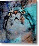 Feline Focus Metal Print