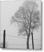Fence And Fog Metal Print