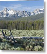 Fence And The Sawtooths Metal Print