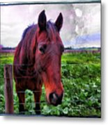 Fence Chat Metal Print