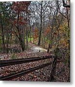 Fence In The Forrest Metal Print