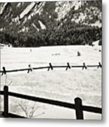 Fence Lines And Flatirons Metal Print