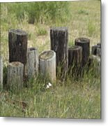 Fence Post All In A Row Metal Print