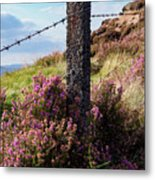 Fence Post In The Peak District Metal Print