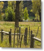 Fence Posts Metal Print