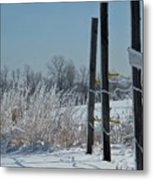 Fence Posts In Ice Metal Print
