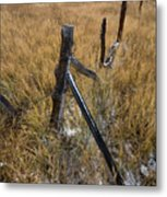 Fence To Nowhere Metal Print