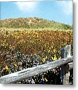 Fence With A View Metal Print