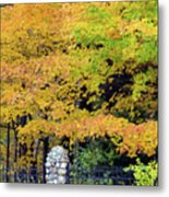 Fenced In Color Metal Print
