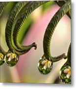 Fern And Plumeria Metal Print