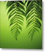 Fern On Green Metal Print