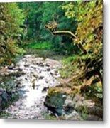 Fern River Oregon Metal Print