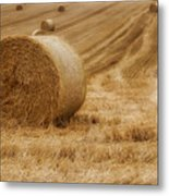 Festival Of Hay Balls In Scotland Metal Print