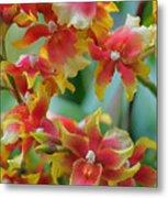 Festive Orchids Metal Print