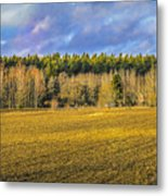 Field And Sky.  Metal Print