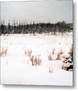 Field By The Bush Ae Metal Print
