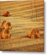 Field Of Gold #3 Metal Print